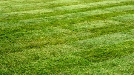 Lawn mowing by Park View Turf and Garden Services