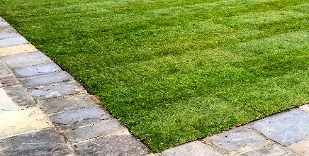 Quality Turf laid by Park View Turf and Garden Services